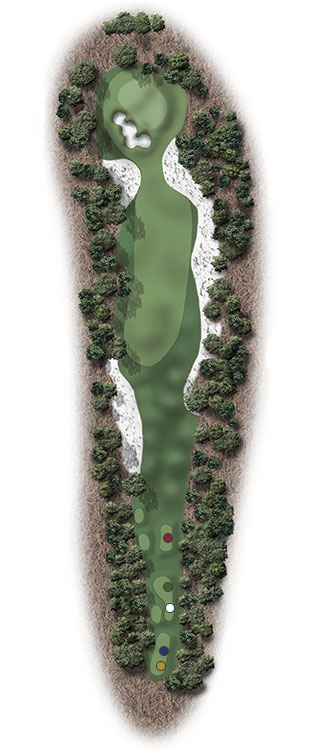 Hole Illustration for Pinehurst No. 8