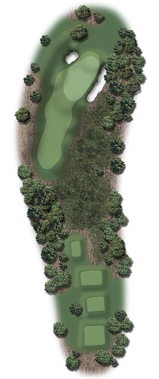 Hole Illustration for Pinehurst No. 8