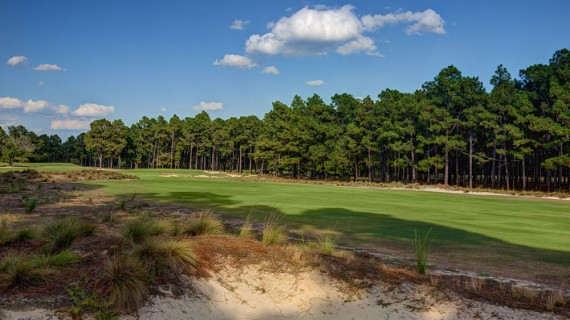 Pinehurst No. 2 12h Hole