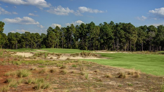 Pinehurst No. 2 14th Hole