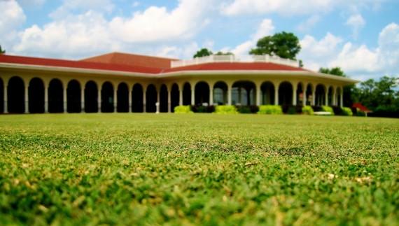 18 No. 2 Bermuda grass
