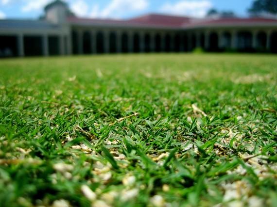 No. 2 Greens Bermuda