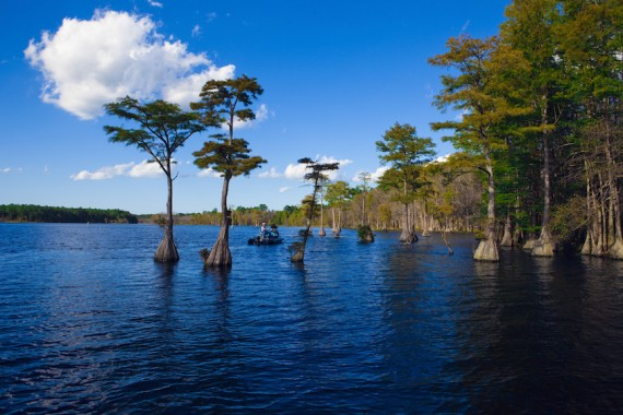 120-acre private Richmond Hill Lake is world-known for bass and bluegill fishing.
