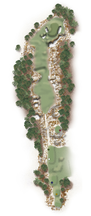 Hole Illustration for Pinehurst No. 12