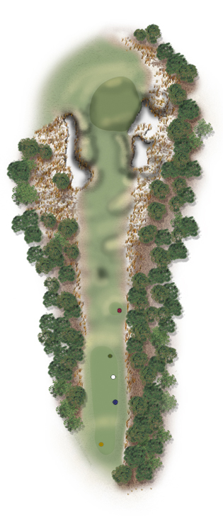 Hole Illustration for Pinehurst No. 15