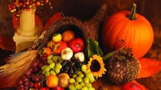 ThanksgivingCornucopia_inset